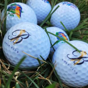 Golf Ball Personalization 1